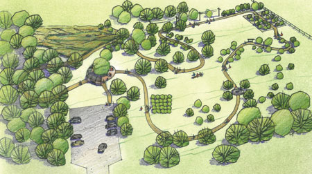 Rendering of a path through the Arboretum's tree-focused research