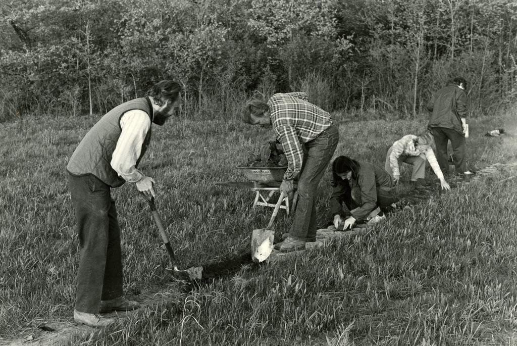 A black and white photograph depicting four Arboretum volunteers working in the prairie.