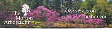 Spring 2020 email signature with Redbuds in vista