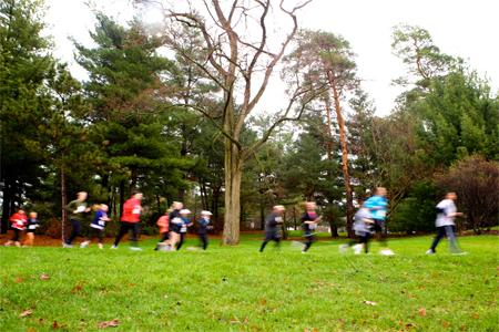 Enjoy running at The Morton Arboretum
