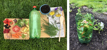 Fruits, veggies, grass clipping and soil can all be composted in a plastic soda bottle.