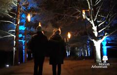 A couple walking through the Arboretum's light show