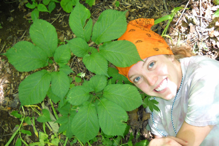 A scientist at The Morton Arboretum poses next to the American ginseng plant