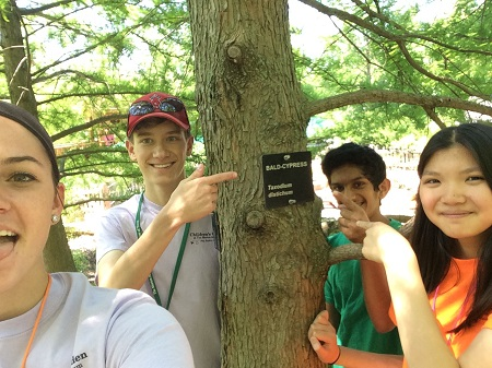 A group of children are taking a selfie with a bald cypress tree.