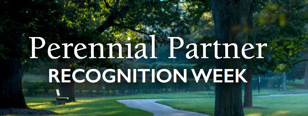 Perennial Partners Welcome Week