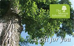 The Morton Arboretum Gift Card