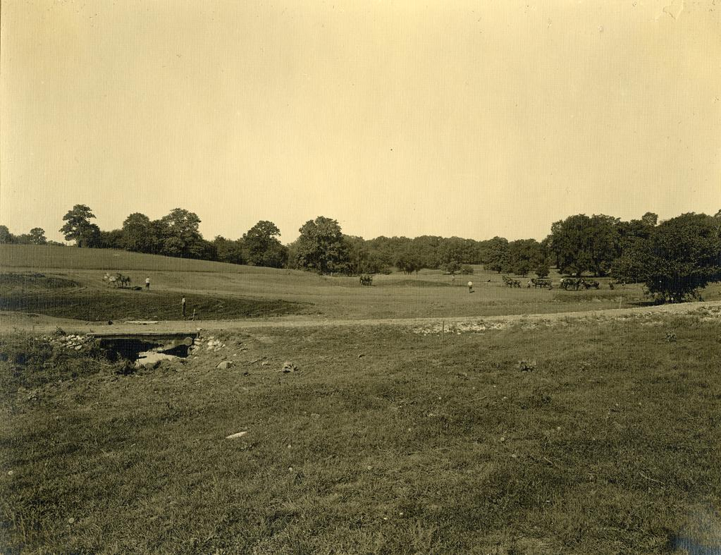 A black and grey photograph of an empty meadow with trees in the distant background.