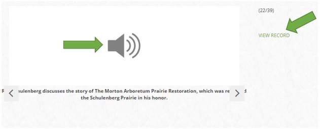 Screen capture showing how an audio file appears in the ACORN gallery. Arrows point to spots users can click to access the audio file's record.
