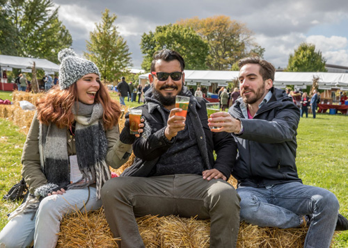 Visitors toasting with glasses on hay bales