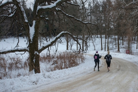 Two runners follow a snowy road through the Arboretum.