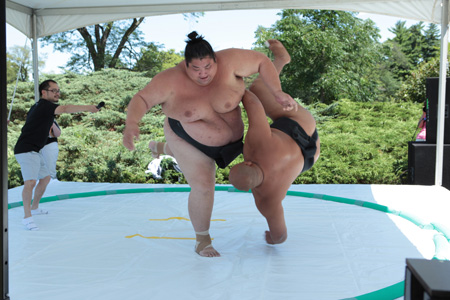 Sumo wrestlers competing
