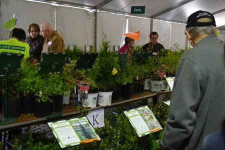 Arbor Day Plant Sale at The Morton Arboretum