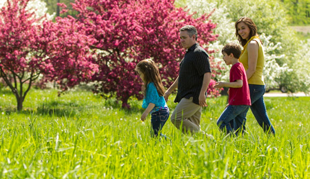 A father, mother, daughter, and son walk through tall grass among flowering crabapple trees with pink and white blossoms.