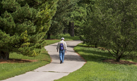 Man walking along a path in the woods at The Morton Arboretum
