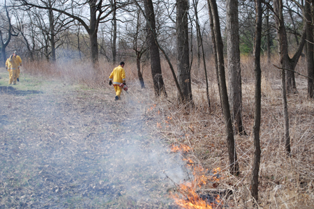 Two men light and monitor fire near the edge of the woods.