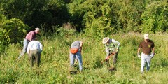 a crew works in a field