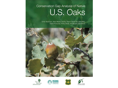 Cover of the Conservation Gap Analysis of Native US Oaks publication