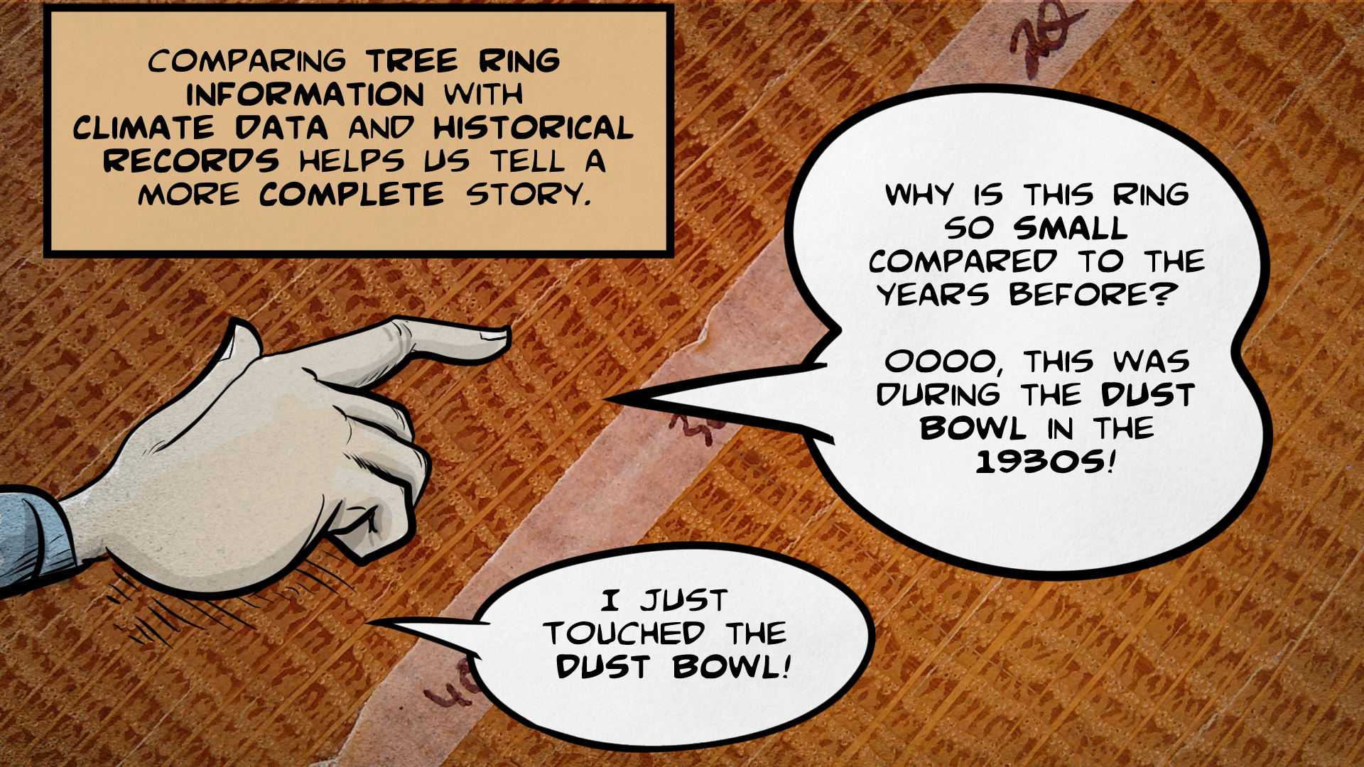 "Carmen, the narrator, says, ""Comparing tree ring information with climate data and historical records helps us tell a more complete story."" Carmen's hand points to a tree ring. She says, ""Why is this ring so small compared to the years before? Oooo, this was during the Dust Bowl in the 1930s! I just touched the Dust Bowl!"""