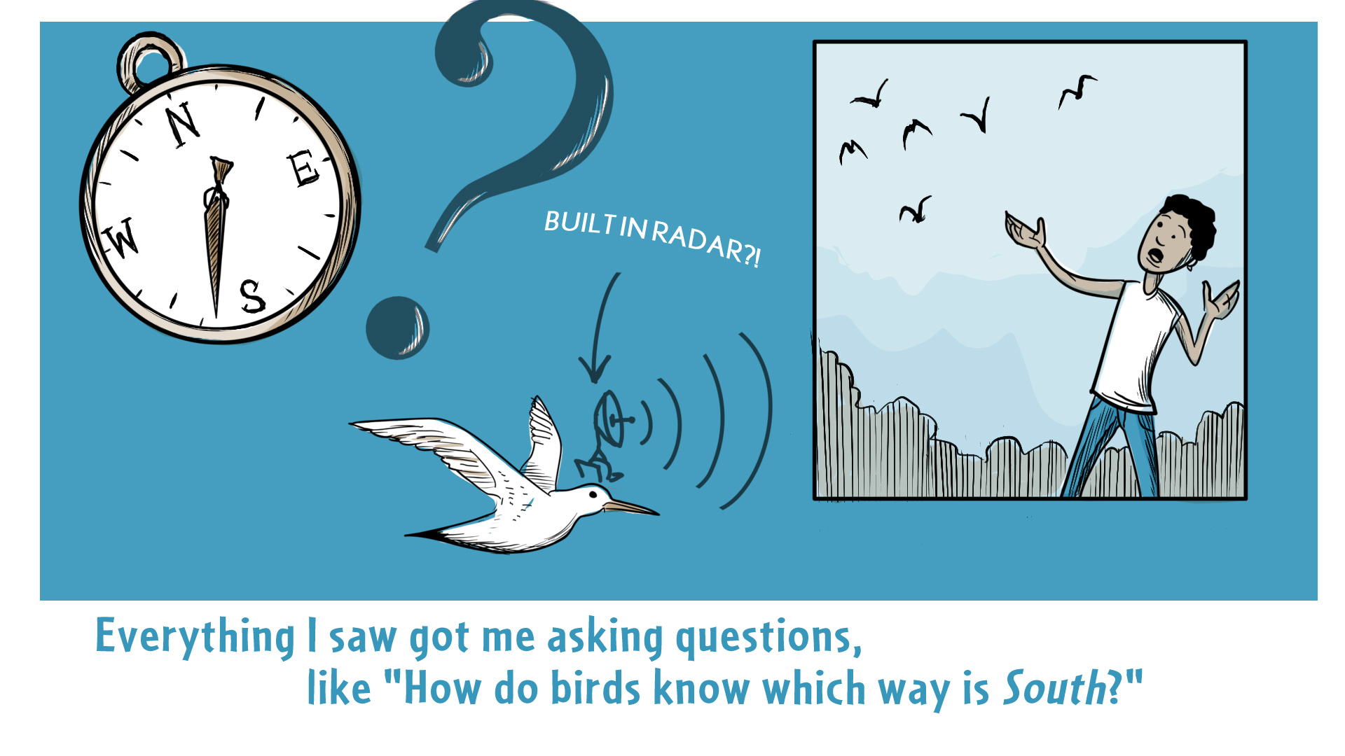 "Chloe, the narrator, says, ""Everything I saw got me asking questions, like ""How do birds know which way is South?"" The screen shows a compass, a large question mark, a bird with a radar transmitter, and a snapshot of Chloe, who is looking up and gesturing at some birds flying by."