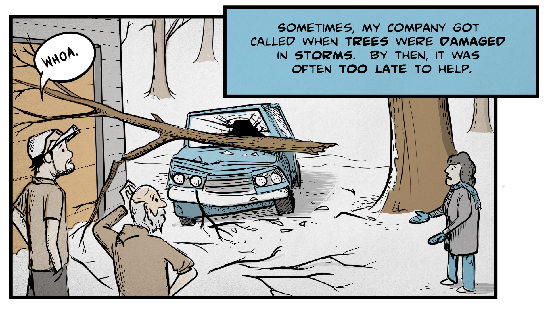 "Danny, the narrator, says, ""Sometimes, my company got called when trees were damaged in storms. By then, it was often too late to help."" A large tree branch sits on top of the hood of a car. The hood is badly dented and the windshield is cracked and broken. The car's owners stand nearby, distraut and dismayed. Danny looks on and says, ""Whoa."""