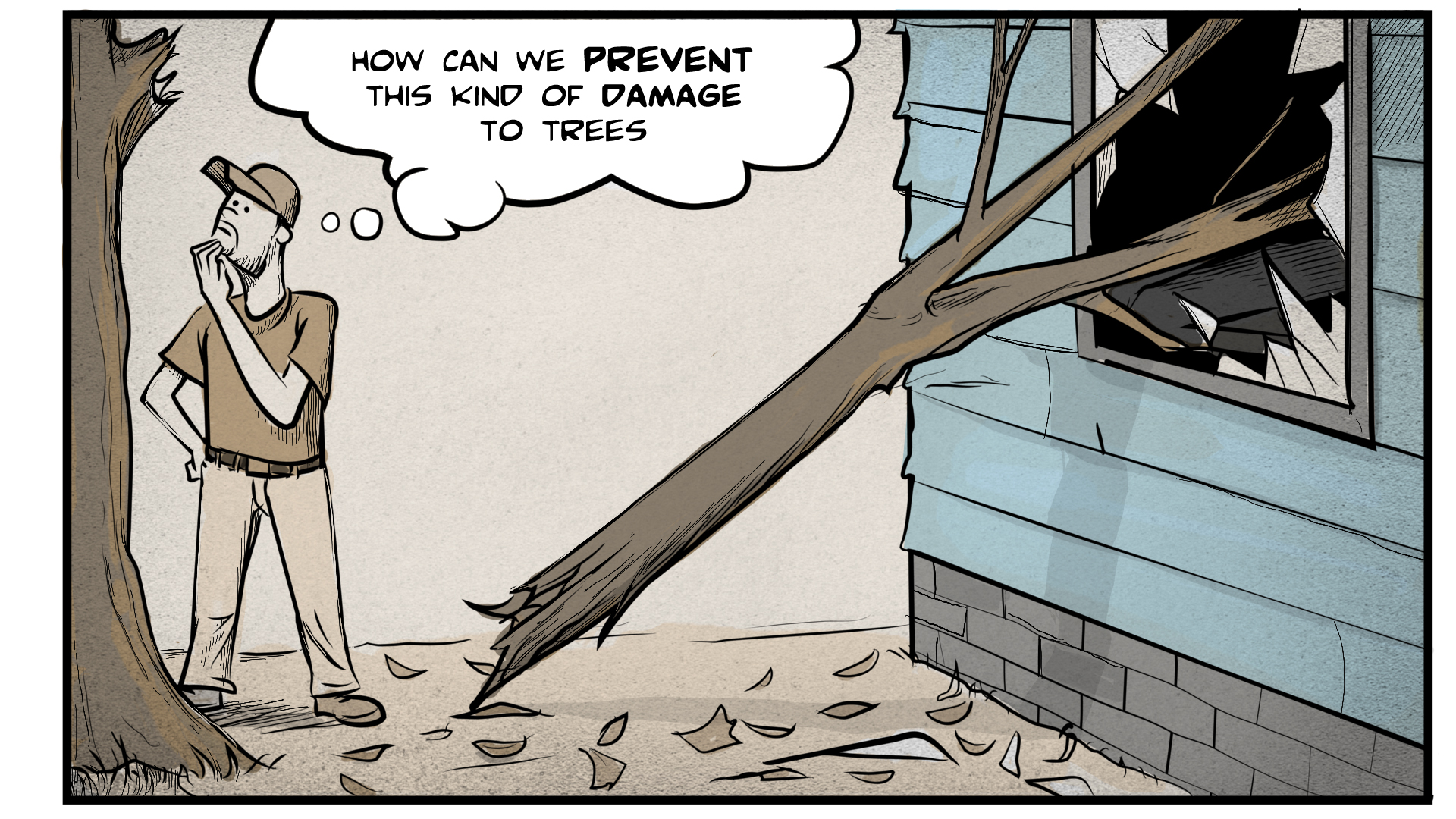 """Danny stands scratching his chin, looking at a broken tree branch which has smashed through a window. He thinks to himself, """"How can we prevent this kind of damage to trees?"""""""