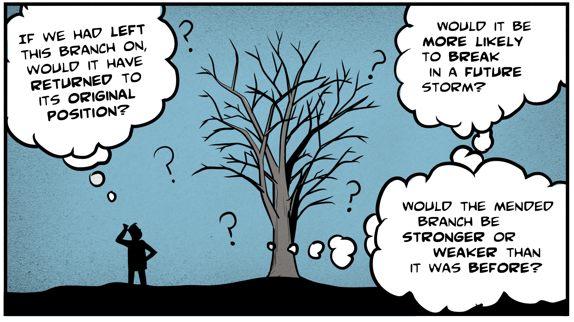 """Danny, in silhouette, stands next to a tree, scratching his head. He thinks, """"If we had left this branch on, would it have returned to its original position? Would it be more likely to break in a future storm? Would the mended branch be stronger or weaker than it was before?"""