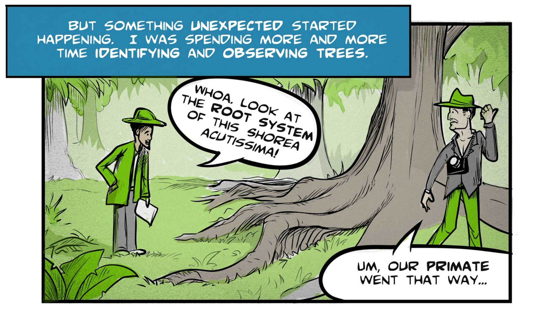 """Felix, the narrator, says, """"But something unexpected started happening. I was spending more and more time identifying and observing trees."""" He has stopped to examine the large, outspreading roots of a tree in the jungle. He says, """"Whoa, look at the root system of this Shorea acutissima!"""" The professor, impatiently walking ahead, says """"Um, our primate went that way..."""""""