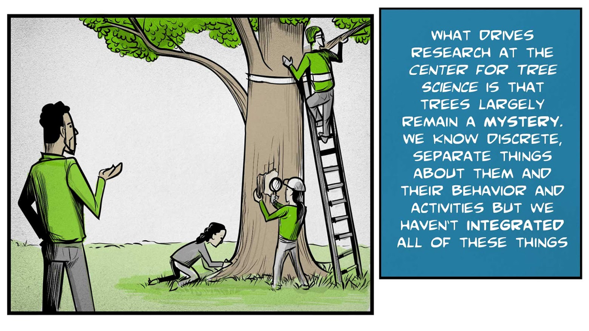 """Felix, the narrator, says, """"What drives research at the Center for Tree Science is that trees largely remain a mystery. We know discrete, separate things about them and their behavior and activities but we haven't integrated all of these things."""" He stands and watches as three people take measurements of a tree. A woman kneels on the ground, looking at the roots. Another is using a magnifying glass to look at the bark. Someone else is high on a ladder, looking at a branch."""