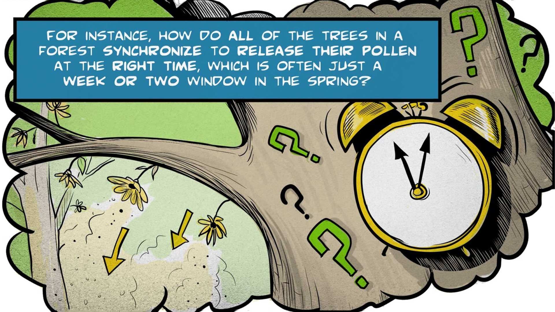 """Felix, the narrator, says, """"For instance, how do all of the trees in a forest synchronize to release their pollen at the right time, which is often just a week or two window in the spring?"""" An alarm clock and question marks are superimposed on a tree. Flowers on a branch release pollen into the air."""