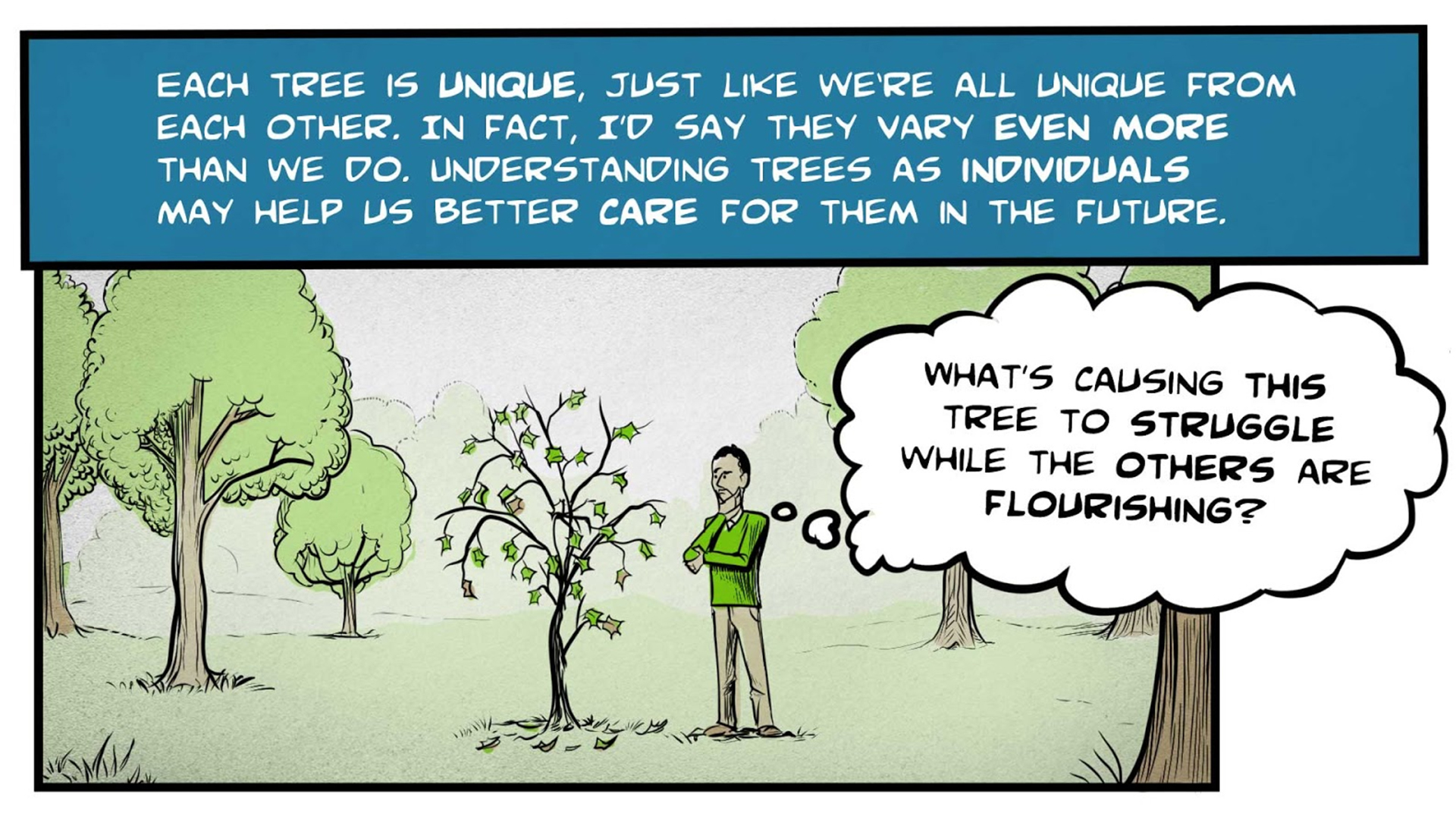 """Felix, the narrator, says, """"Each tree is unique, just like we're all unique from each other. In fact, I'd say they vary even more than we do. Understanding trees as individuals may help us better care for them in the future. """" He stands in a forest, looking at an unhealthy-looking tree with drooping branches and sparse leaves. He thinks to himself, """"What's causing this tree to struggle while the others are flourishing?"""""""
