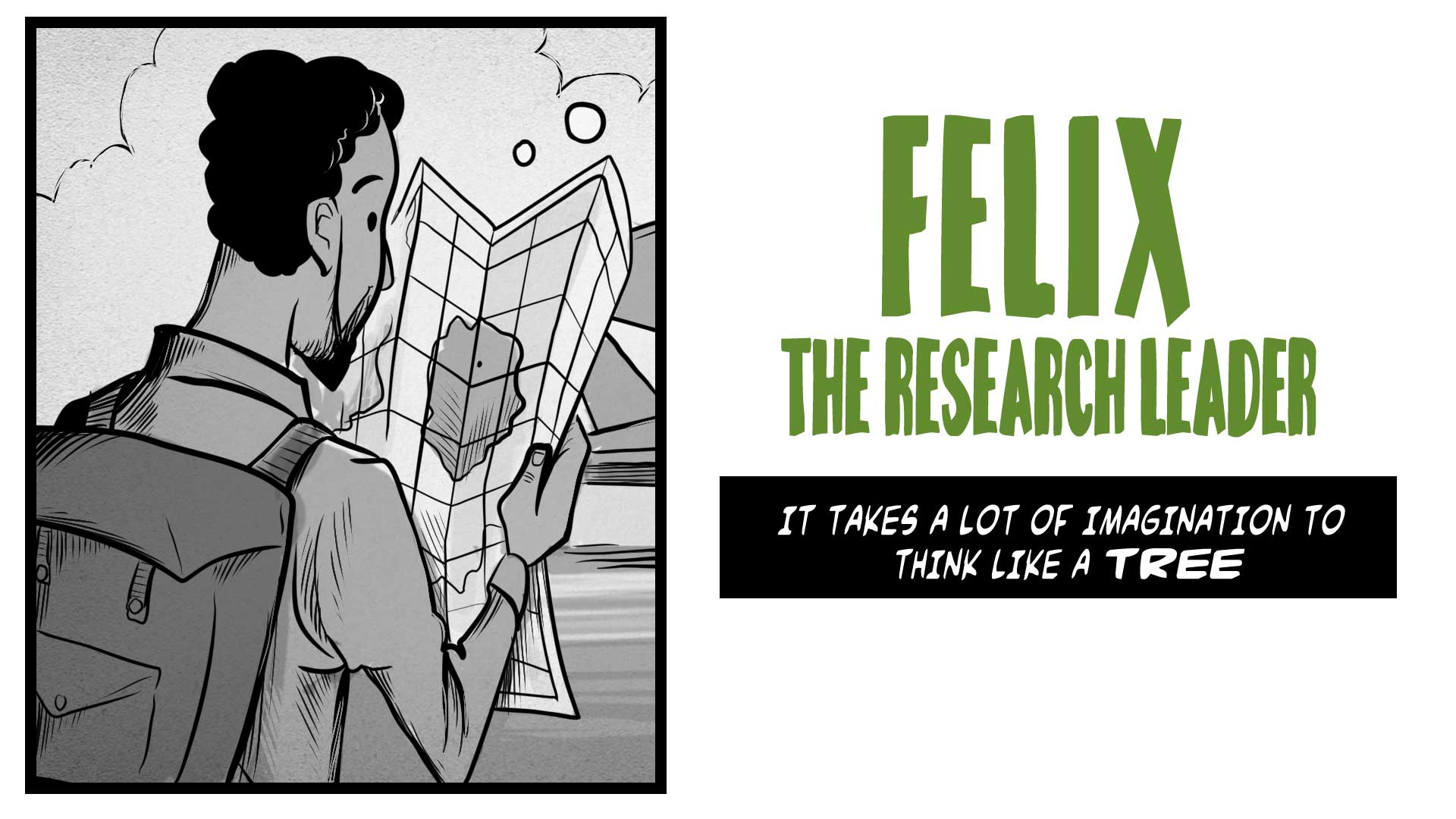 Story title:  Felix, the Research Leader.  It take a lot of imagination to think like a tree.