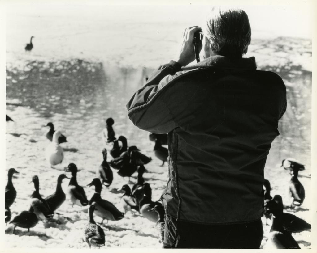 This black and white photograph depicts former Arboretum staff member, Alred Etter, taking pictures of geese and duck on a frozen lake with snow on it.