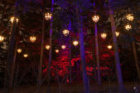 Lit chandeliers hanging from pine trees. & Illumination: Tree Lights at The Morton Arboretum | The Morton ... azcodes.com