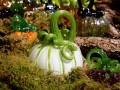 Celebrate Fall With A Trip To The Morton Arboretum's Glass Pumpkin Patch