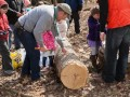 Family Maple Tapping Hike