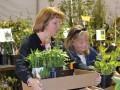 Shop Trees, Plants at The Morton Arboretum's Arbor Day Plant Sale