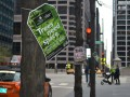 "Trees Throughout Chicago To Inspire Residents To ""Be A Tree Champion"" This Arbor Day"
