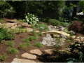 Help Reduce Stormwater Run-off and Beautify Your Space with a Rain Garden