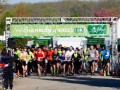 Welcome the Spring Season with The Morton Arboretum's Champion of Trees 10K