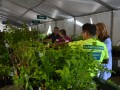 Arbor Day Plant Sale frequently asked questions
