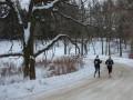 Pine Pacer Challenge