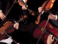 Chamber Concert Series