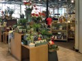 Continue the Troll Hunt with Finds from The Arboretum Store