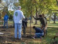 The Morton Arboretum joins Corporate Sustainability Partnership Program effort