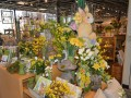 Mother's Day Gift Ideas From The Arboretum Store