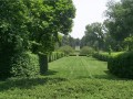 Prune Formal Hedges Now or Wait?