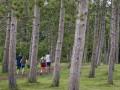 The Morton Arboretum fall preview, September calendar of events