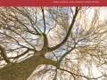 IUCN Red List of Fraxinus Released; Offers Comprehensive Look at Conservation Status of World's Ash Trees