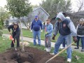 The Morton Arboretum partners with tree champions locally and in China