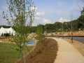 Arboretum Partners With The Tollway To Enhance Urban Forest